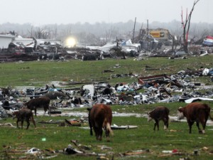 Joplin devastation after tornadoes